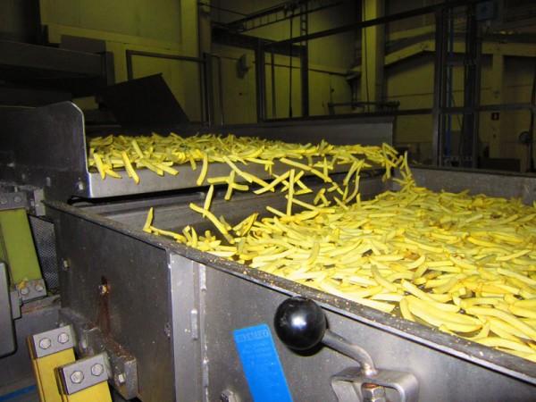 5.5_voedingsmiddelenindustrie